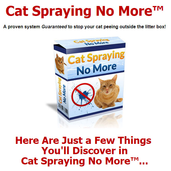 Cat spraying no more